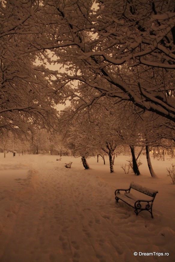 Noapte de iarnă